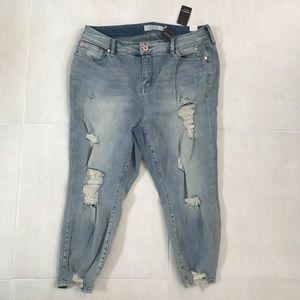 Torrid Plus Distressed Stretch Jeans 18XS